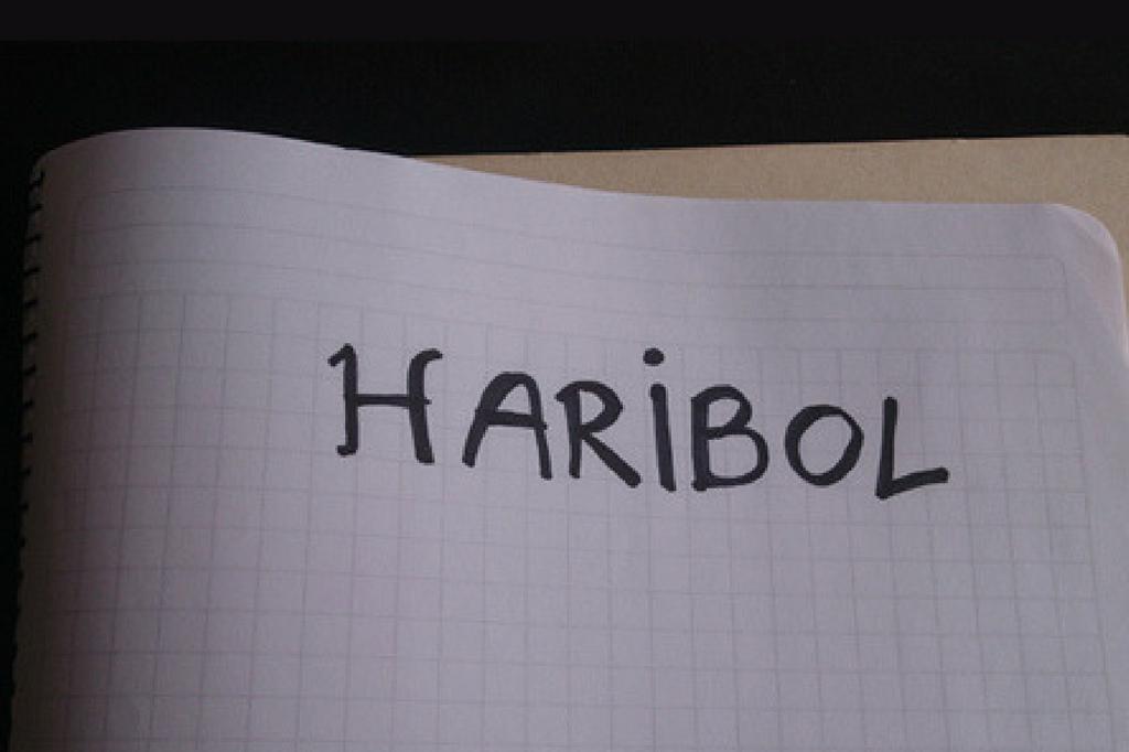 ¿Por qué Haribol Chile?